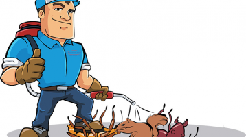 Minneapolis Pest and Critter Control Services – Minnesota Metro Area