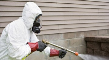 Pest Control Services Minneapolis/St Paul Metro